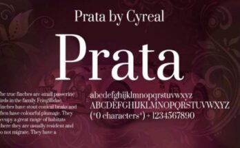 Prata Font Free Download [Direct Link]