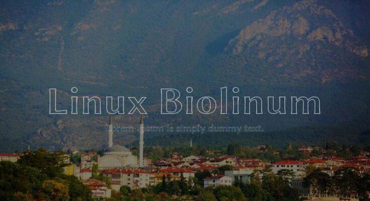 Linux Biolinum Font Free Download [Direct Link]