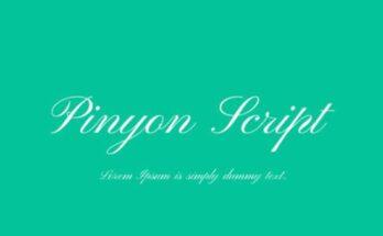 Pinyou-Script-Font-Family-Free-Download